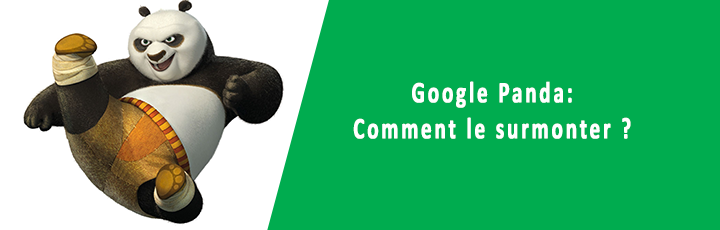 Google Panda : comment le surmonter ?