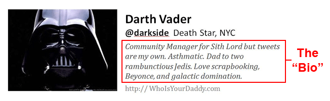 Twitter Profile example with Bio - Creative!