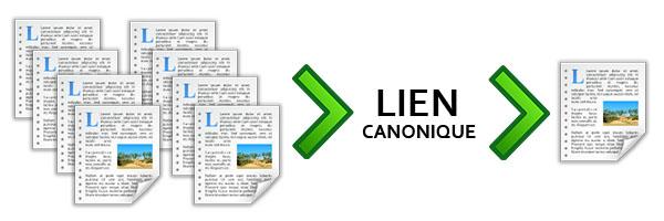 Pages avec des liens canoniques