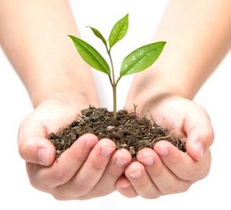 lead-nurture