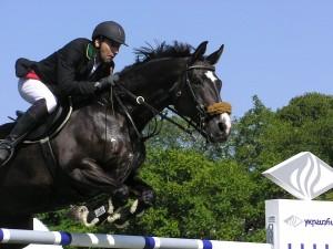 cavalier sur cheval sauts obstacle